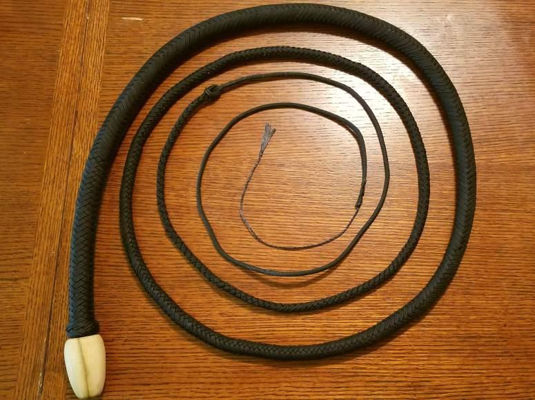 Black Snake (4)